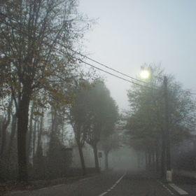 ... l'incanto delle nebbie ...