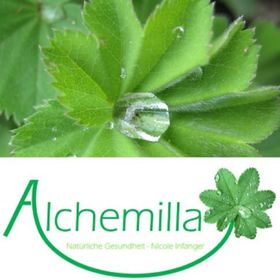 Alchemilla - Natürliche Gesundheit