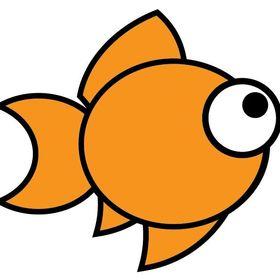moderngoldfish