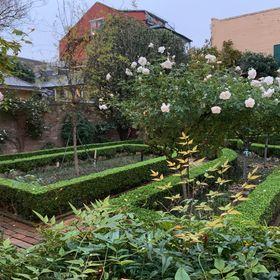 A Forgotten Garden