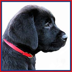 Black Dog Art - Pet Memorial Gifts & Dog Lover Keepsakes