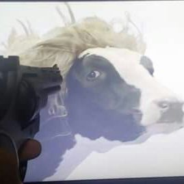 The gun to the cow