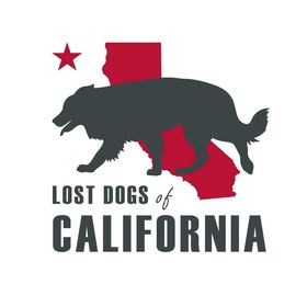 Lost Dogs of California