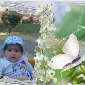 Elif Ao