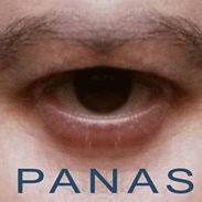 Pierre Panas
