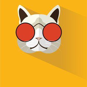 Pop Kitty