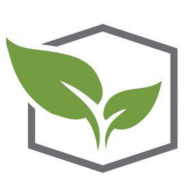 Terapia Urbana Diseño de jardines verticales