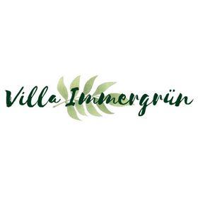 Villa Immergrün |Nachhaltigkeitsblog 🌿