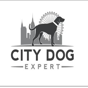 City Dog Expert