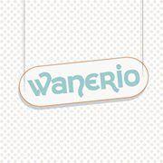 Wanerio Torino