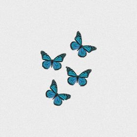 Butterfly_person🦋🌞