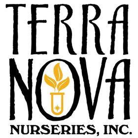 Terra Nova Nurseries