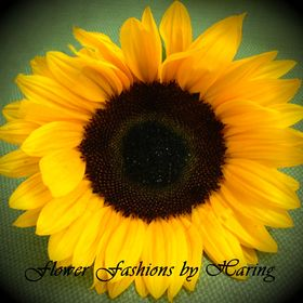 Flower Fashions by Haring