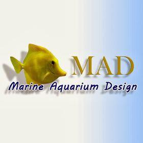 Marine Aquarium Design
