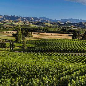 Mt. Beautiful Winery