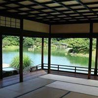 JapaneseMats Tatami