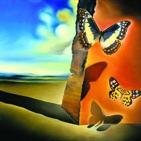 De 12 beste afbeeldingen van art   Mc escher, Schildpad