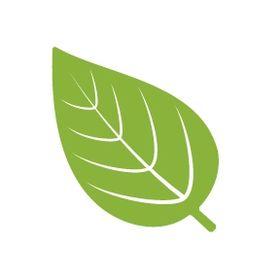 3a2e30f9787bd8 Leaf Boutique (leafbrookline) on Pinterest