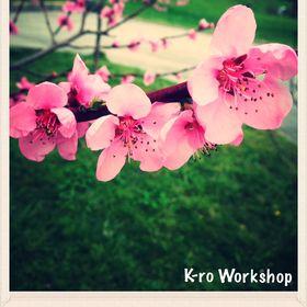 K-ro Workshop