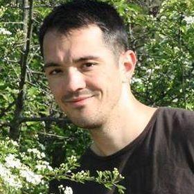 Ionut Stanica