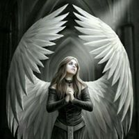 Angel Seeker