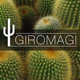 Giromagi Cactus
