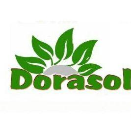 Dorasol Organik Solucan Gübresi