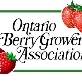 Berry Growers of Ontario