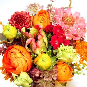 Bouvard Fleurs
