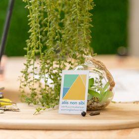 Aliis non sibi | renovatiecoach & woningbeheerder