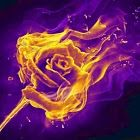 Ambar Flame
