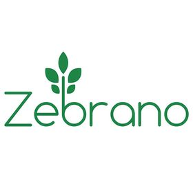 Zebrano Rattan Garden Furniture