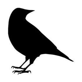 Black Crow Studios