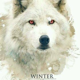 Winter is Coming Online