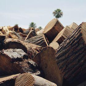 Glatts Firewood