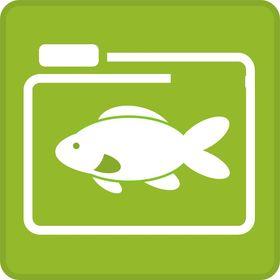 Self.fish