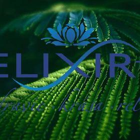 Elixir+