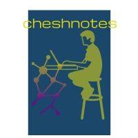 Notesmatic
