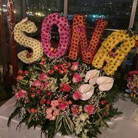 Sona Haciyeva