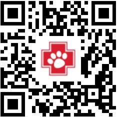 TSV Notpfote Animal Rescue e.V.