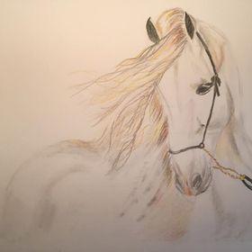 7 Horses