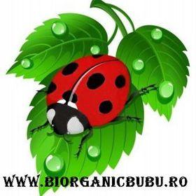 Biorganicbubu.ro