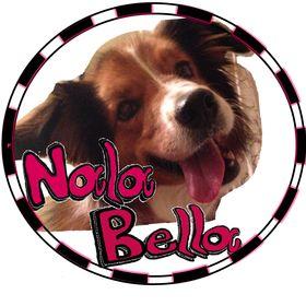 Nala Bella Teaching