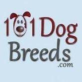 101 Dogbreeds