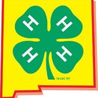 New Mexico State 4-H