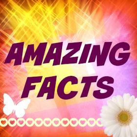Amazing Facts 4 u