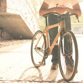Bikestein cycles