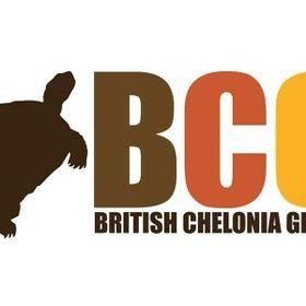 British Chelonia Group