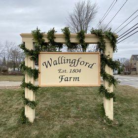 wallingford farm wallingfordfarm