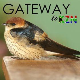 Gateway to KZN